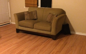 Quality furniture and affordable flooring